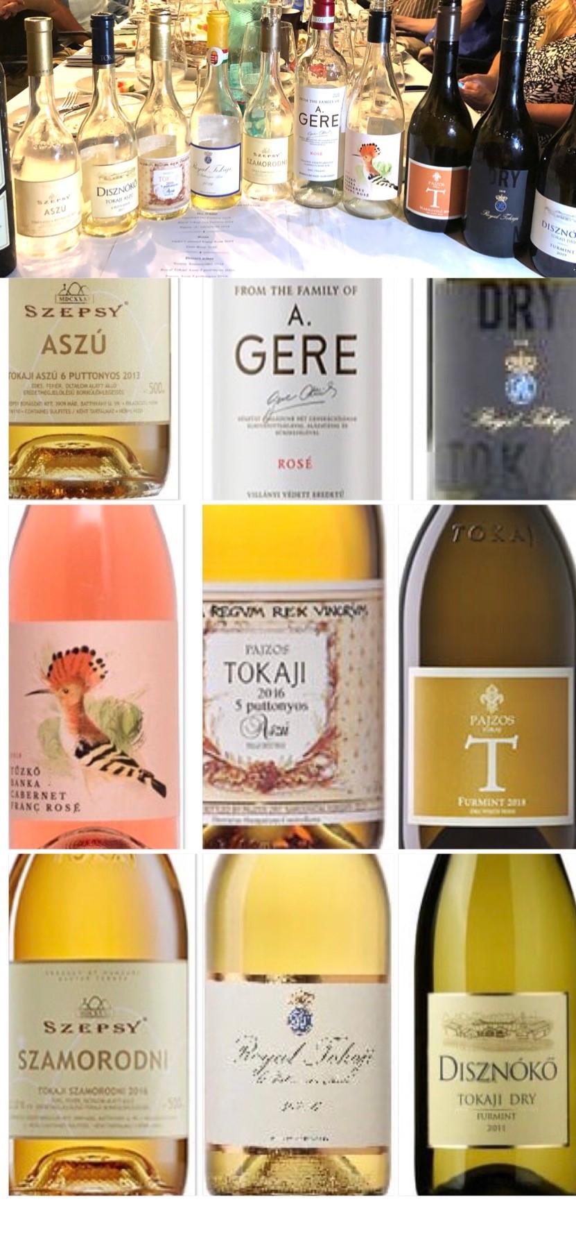 יין מקרב לבבות ותורם לקשר החם שבין הונגריה וישראל – סומלייה Sommelier